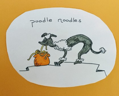 Poodle eating noodles