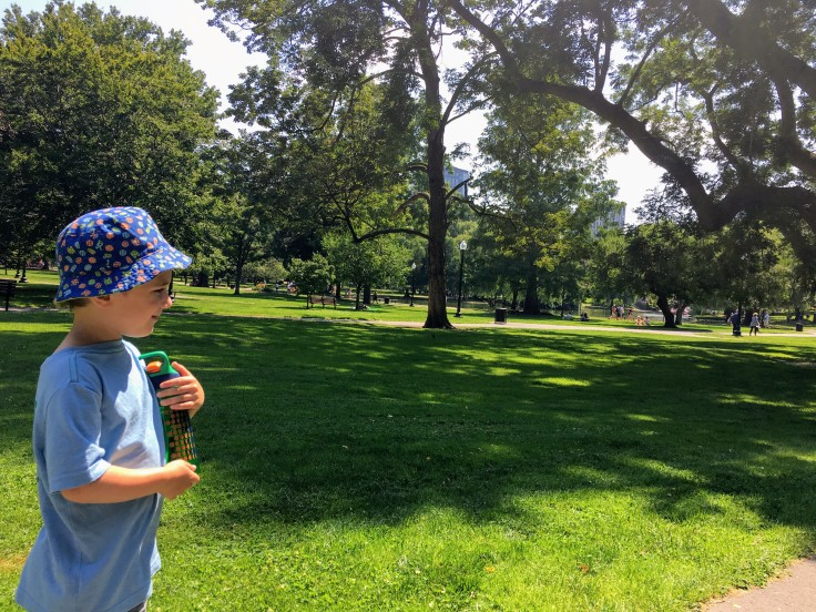 Reece exploring Boston Public Garden