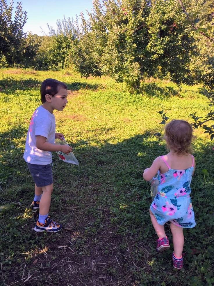 Kat and Reece apple picking
