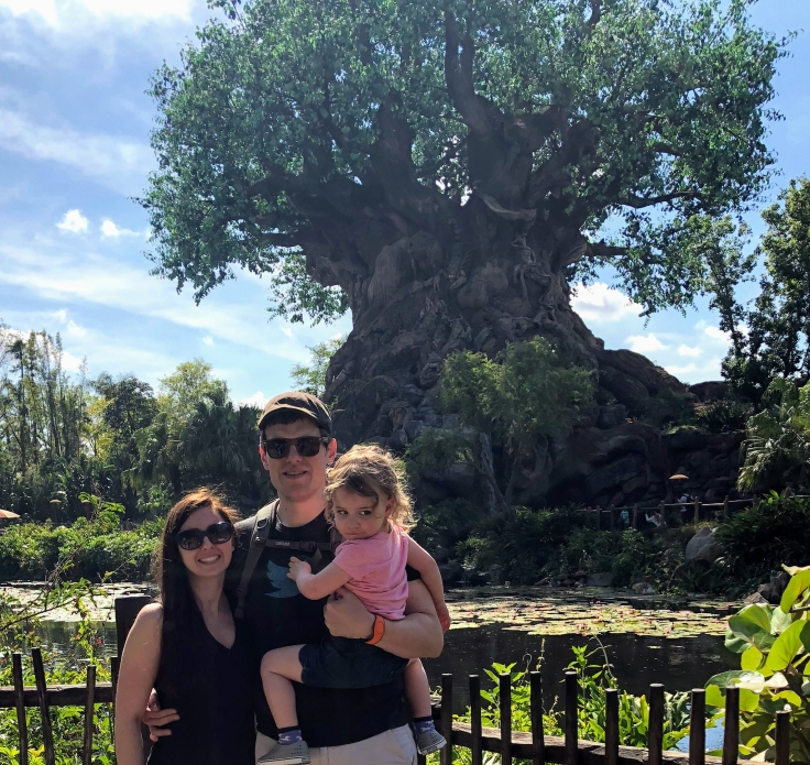 Animal Kingdom in front of the Tree of Life