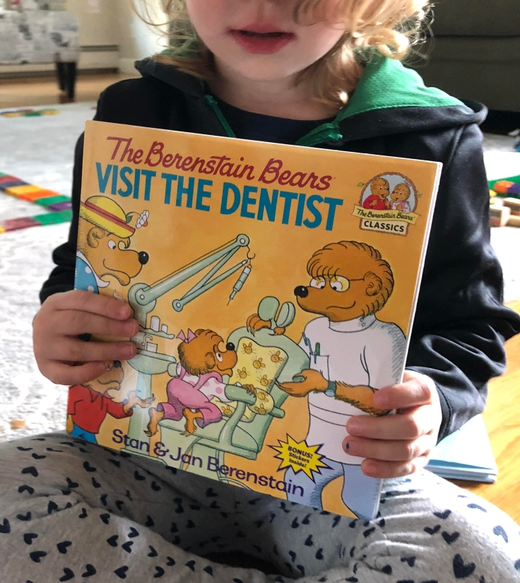 Berenstain Bears Visit the Dentist book