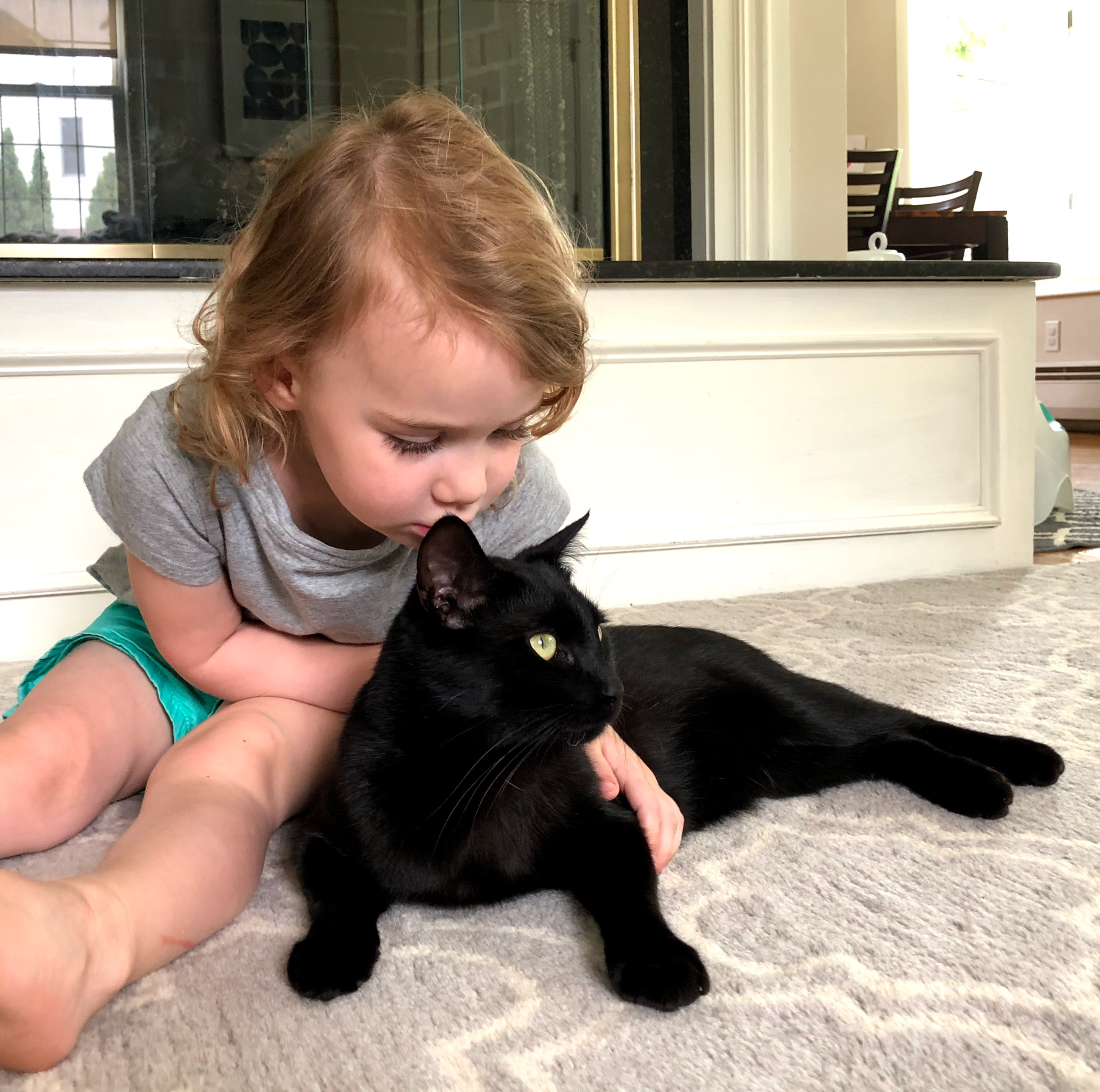 Kat kissing Shadow the cat